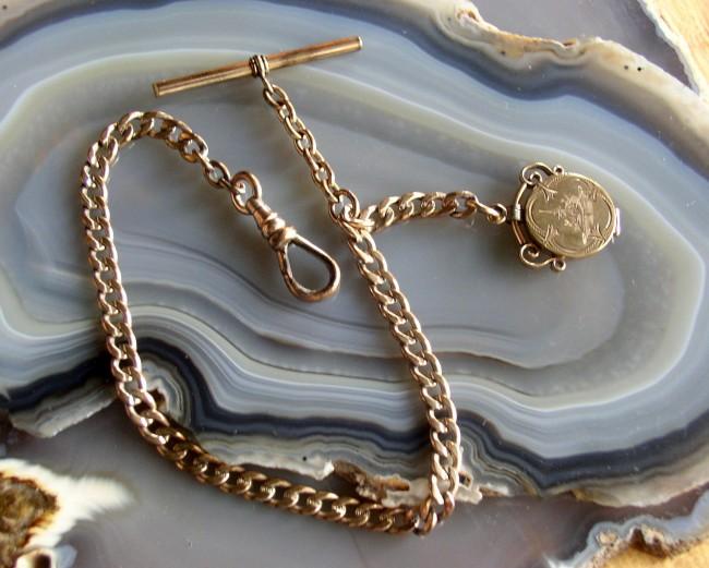 Briggs Chain 1